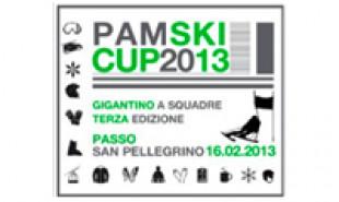 Pamski Cup 2013